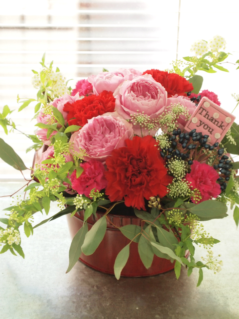The arrangement of carnations<span>¥3,500(ex.tax)</span>