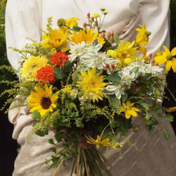Bouquet of natural sunflowers<span>¥3,500(ex.tax)</span>