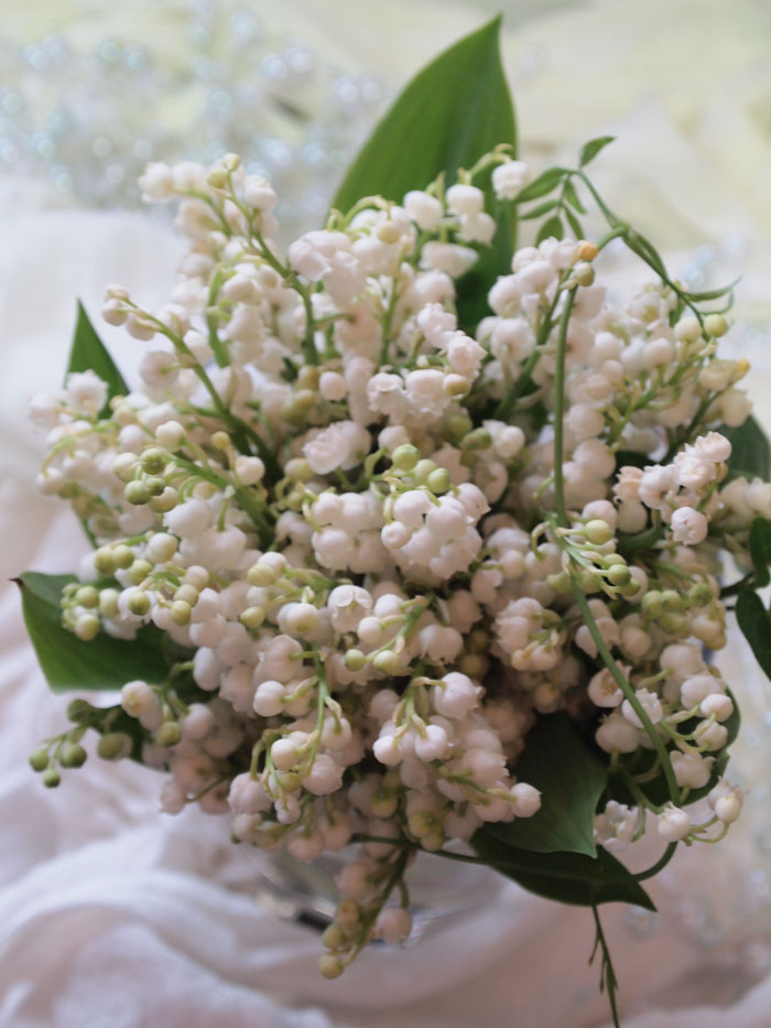 lily of the valley<span>¥3,000(ex.tax)</span>